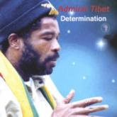 admiral-tibett-determination
