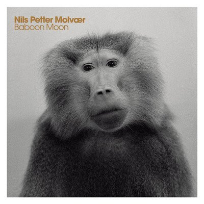 http://images.music-story.com/img/album_N_400/nils-petter-molvaer-baboon-moon.jpg